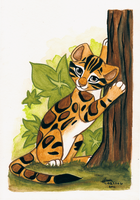 Clouded Leopard v.2 by Kamirah