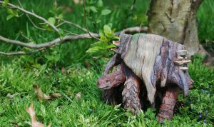 Stump Tortoise outdoors by BrittaM