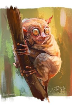 Tarsier + process by kalambo