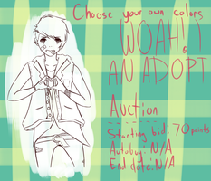 CHOOSE YOUR OWN COLORS--AUCTION by Tochi-Adopts