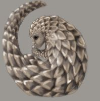 Splice Pangolin Human by evolra