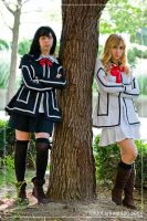 Vampire Knight Cosplay by faidoi