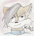 Prower...Miles Prower by CleeksFire