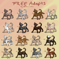 FREE Cat adoptables - closed by Nahemii-chan