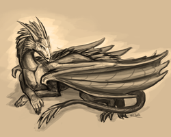 Dragon Sketch by Minionslayer