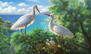 Storks by alfabell