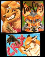 AC 08 Painted Badges by FablePaint