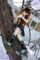 So the acrobats stuck in a tree. eh? by Cometblack
