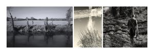 Riverbank Triptych by lornamacdonald