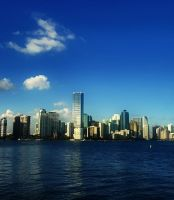 Downtown View - Miami by Crazito