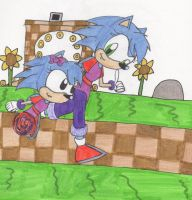 Sarabi in Sonic Generations by Piplup88908