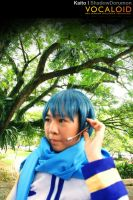 VOCALOID :: Kaito by potter87