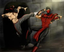 Liu Kang vs Ermac by Amenoosa