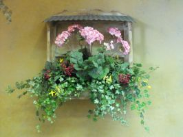 Stock: Window Hanging Flowers by Stock-By-Michelle