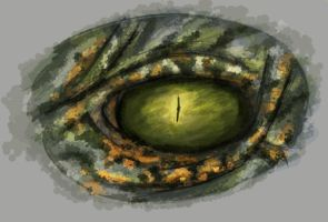 Reptile eye practice by SteinWill