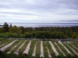 On Top of Mackinac by E511