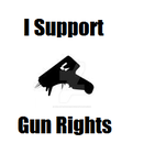 Gun Rights by Gir-of-Spades