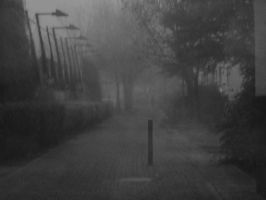 In the Mist by Narina92