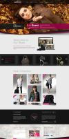 Fashion Shop Responsive WordPress Theme by the-webdesign