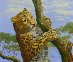 Young Leopard On Tree by AldemButcher