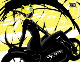 Celty by Bayeuxman