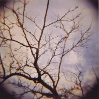 lomography by Squirreltag