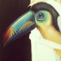 toucan preview by JordanMendenhall