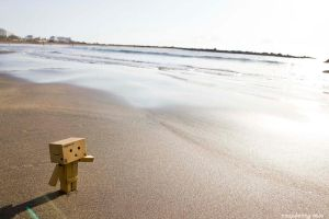 Beachtime for Danbo by white---butterfly