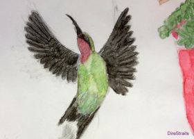 Ruby Throated Hummingbird by thedirestraits