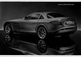 Beauty SLR by donescu