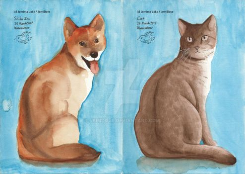 Watercolour Cat and Dog 25-26Mar2017 by JemiDove