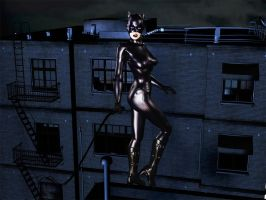 Catwoman by graphicpoetry