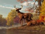 Deer on an Autumn Lakeshore by deskridge