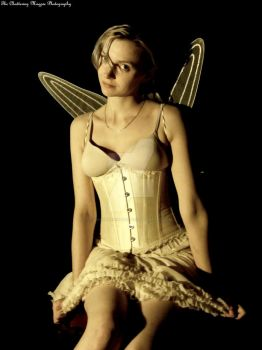 Fairy (DSCF4633 #1a CDB) by Chattering-Magpie