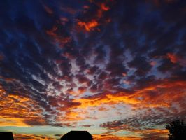 Backyard Sunset #65 Colors 2 by superSeether