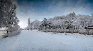 Winter 2011_5 by LCristian