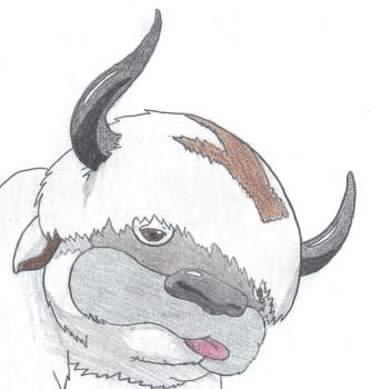 Appa Close-Up by msmusic137