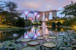 .:Gardens By The Bay:. by RHCheng