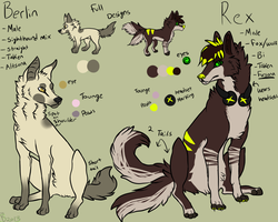 Rex and Berlin Official Reference sheet 2013 by captainhomo