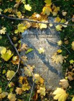 Grave in the Grass by icompton01