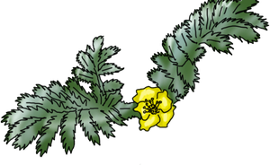 Silverweed by lighteningfox