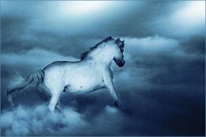 .:Like on Clouds:. by WhiteSpiritWolf