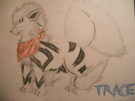 Trace, The White Arcanine by gibina4ever