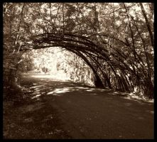 Archway by silentmagician2001