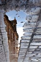 reflection in a puddle 01 by siwymortis
