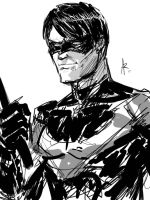 Nightwing.... by Archonyto