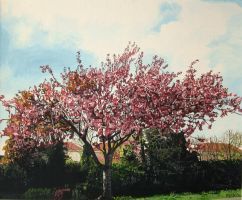 Cherry Blossom Tree by eastcorkpainter