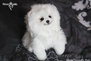 Puppy Spitz by Flicker-Dolls