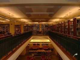 alexandria library speed dating Speed dating near dc relish speed dating saturday night speed dating event in dc for singlessat, jul 21, speed dating speed dating black speed dating dc alexandria va near dc 7 00pmdirty martini, washington, dcstarts at on eventbrite.