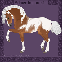 Winter Import 611 by ThatDenver